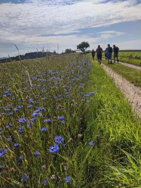 Wanderung am Granitpilgerweg - Bild 1593244550