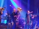 Kultband Haindling begeisterte in Linz - Bild 18