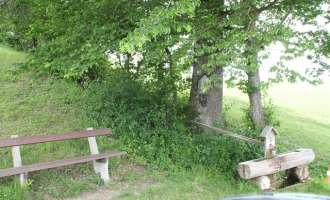 Meditation in der Natur