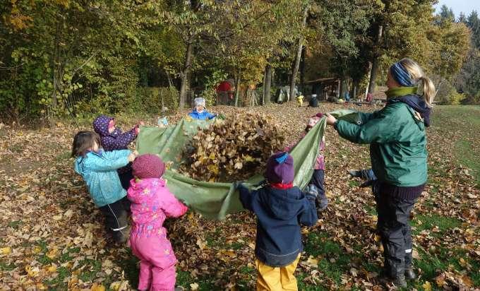 Waldkindergarten Fur Sonnberg Der Wald Als Spiel Und Lernort