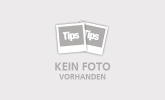 Weidegänse pflegen Wiesen im Südburgenland und schmecken erstklassig