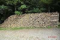 Brennholz, Hartholz, Buchenholz, Meterscheiter, nähe Vöcklabruck