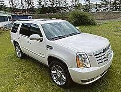 Cadillac Escalade Platin Hybrid, 420