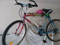 Mountain Bike Cat Shimano 21 Gang