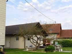 Dachstuhl inklusive Welleternitdach