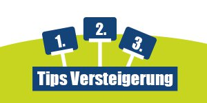 https://www.tips.at/versteigerung