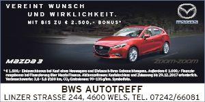 BWS Autotreff 504530