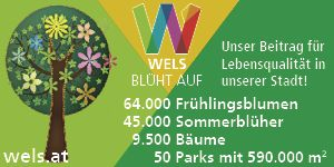 Stadt Wels / SPÖ Silvia Huber