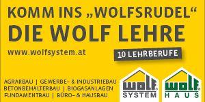 Wolf Systembau W19 300x150