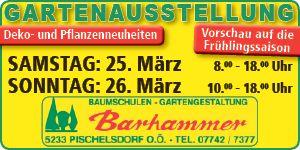 Barhammer Upseller Banner