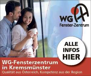 S21 WG Fenster