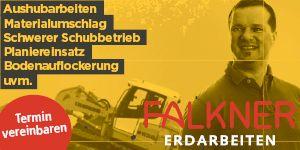 Falkner Heinz