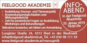 Feelgood Akademie
