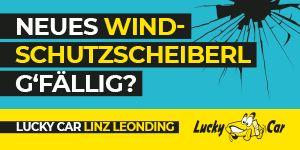 Windschutzscheibenaktion Lucky Car