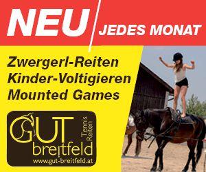 Gut Breitfeld
