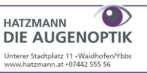 SA17 - Hatzmann