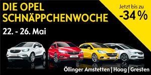 Banner Opel Öllinger
