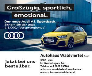 Autohaus W4tel Audi