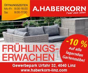 Haberkorn Banner Upseller KW12
